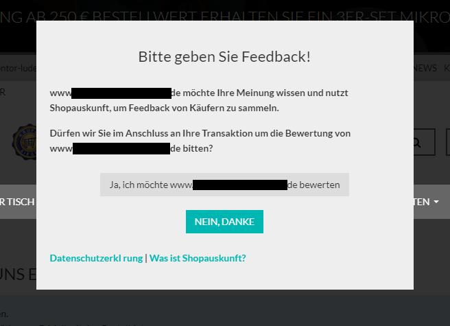 Ein Screenshot eines Bewertungsfensters